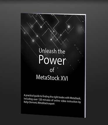 Unleash The Power of Metastock Training